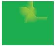 cams-hashi-logo